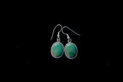 Oval Green Turquoise Earrings Resized