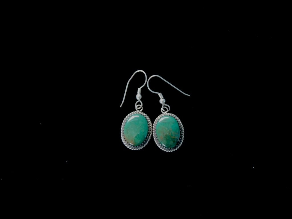 Oval Green Turquoise Earrings Resized