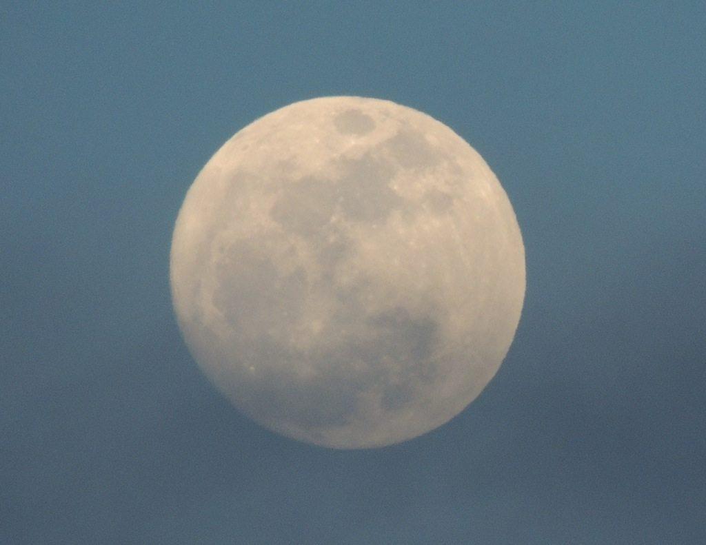 Blue Moon 1 Resized