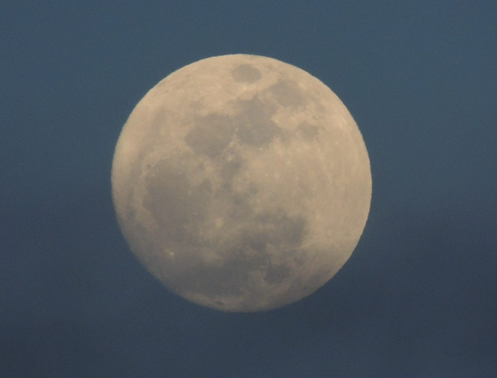 Blue Moon 2 Resized