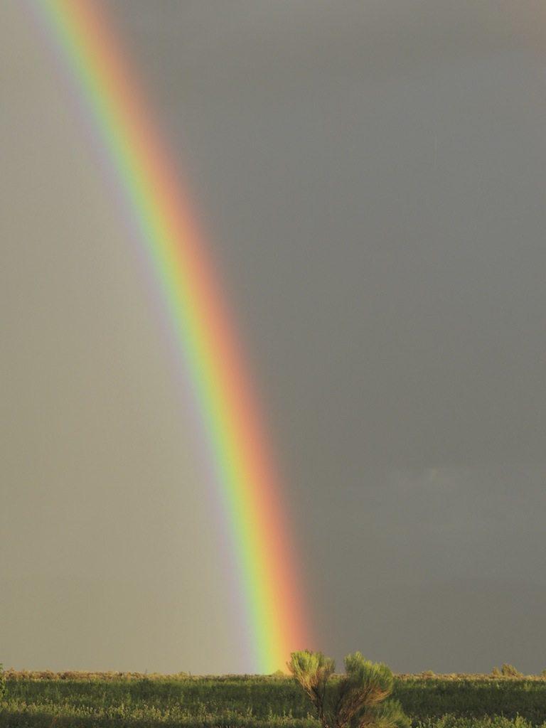 Rainbow 3 Resized
