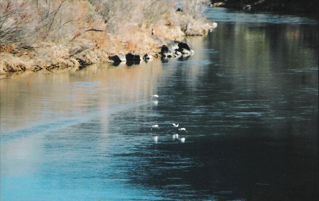 Quartzite Skimming